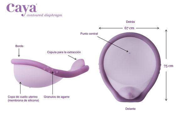diafragma_CAYA_partes
