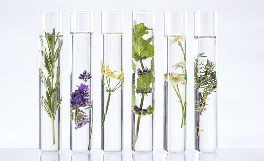 Productos higiene naturales y ecologicos